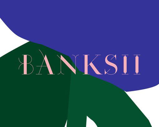 A Flower for the Banks of Barangaroo - Banksii